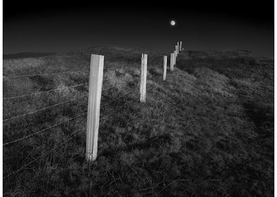 Full Moon Over Fence, 2004