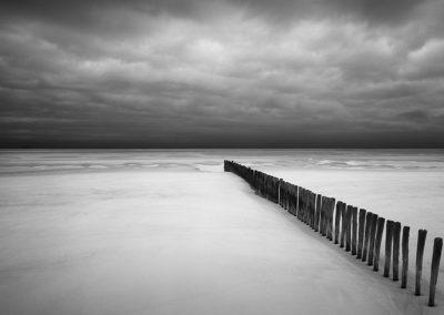 Shorelines, 2006