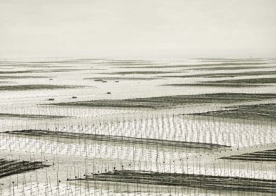 Mesh, South China Sea, 2011