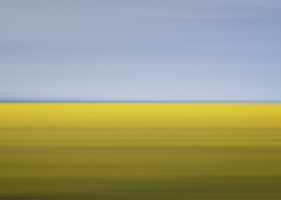 Drift 11, Mustard Field, Carman, Canada, 2001