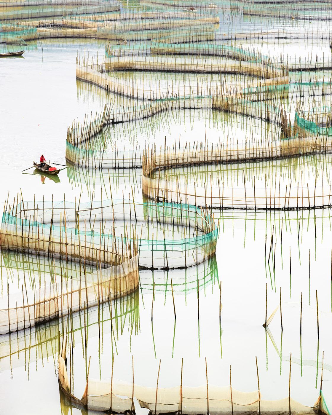 Nets (vertical), Ningde, Fujian, People's Republic of China, 2017