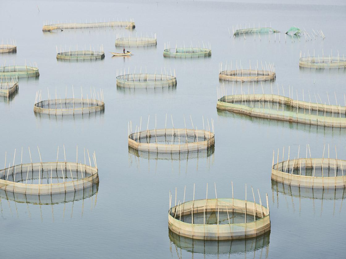 Nets 2, Ningde, Fujian, People's Republic of China, 2017