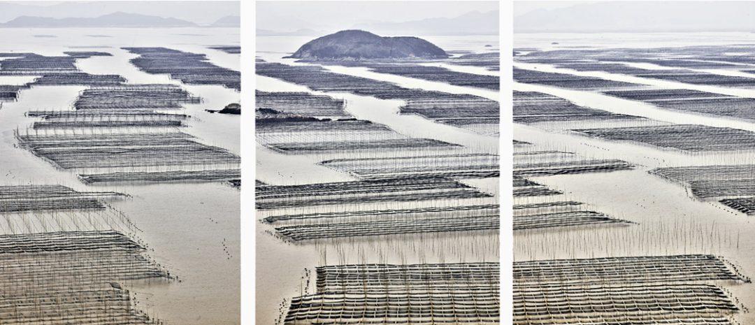 Nets, Ningde, Fujian, People's Republic of China, 2017