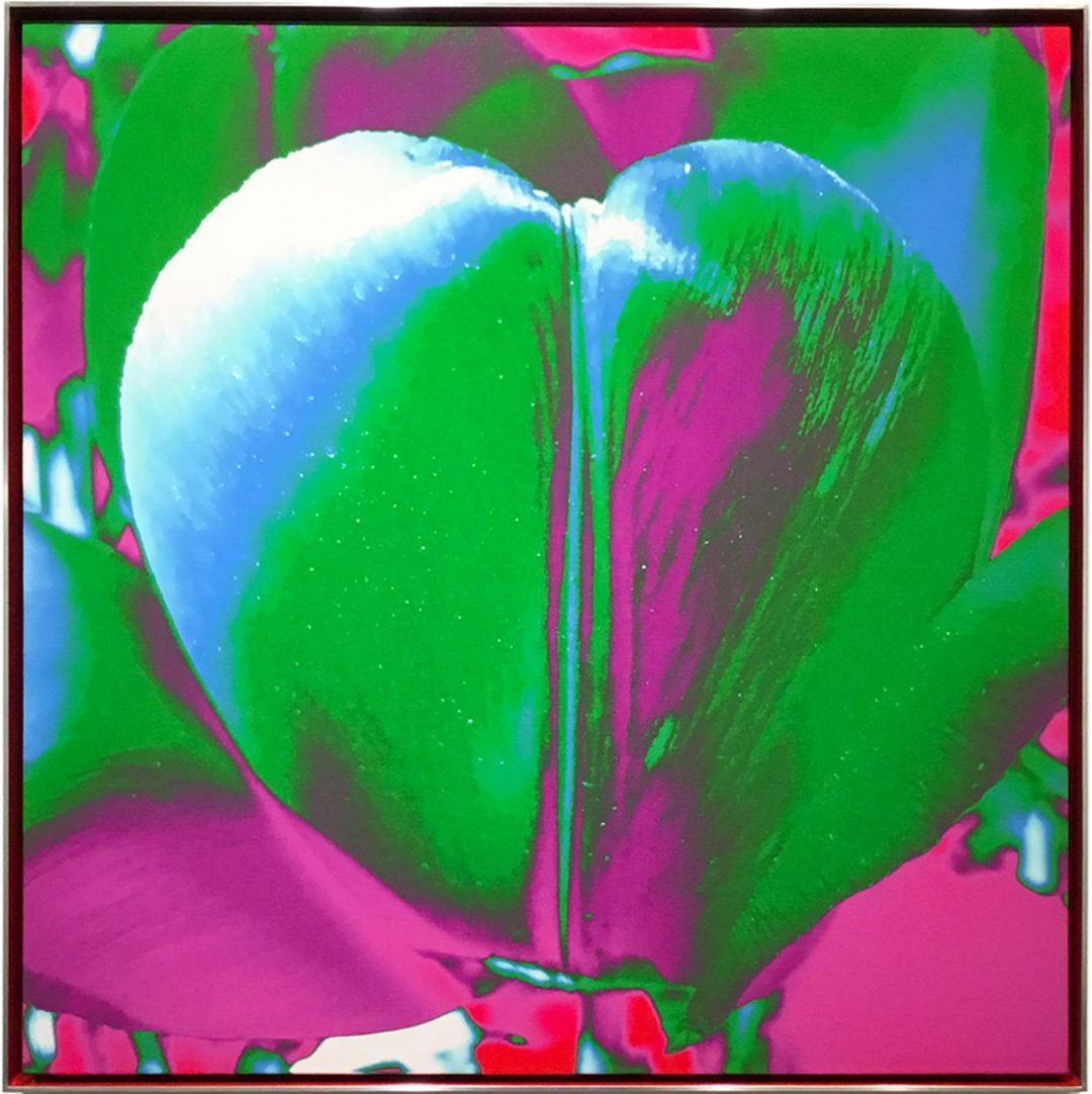 Tulip As My Heart In The Universe (Green), 2019 - James Lahey