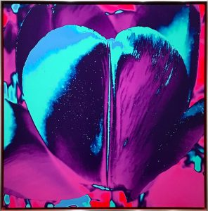 Tulip As My Heart In The Universe (Purple), 2019