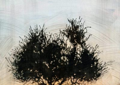 Stephen Hutchings – Tree #3