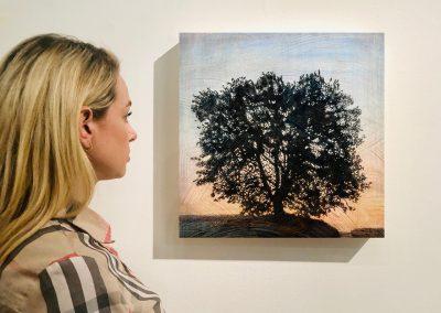 "Tree 4, 16"" x 16"", Installation - Stephen Hutchings"