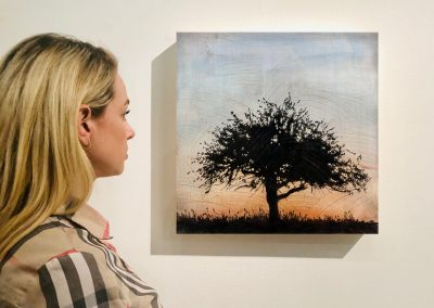 "Tree 6, 16"" x 16"", Installation - Stephen Hutchings"