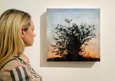 "Tree 11, 16"" x 16"", Installation - Stephen Hutchings"