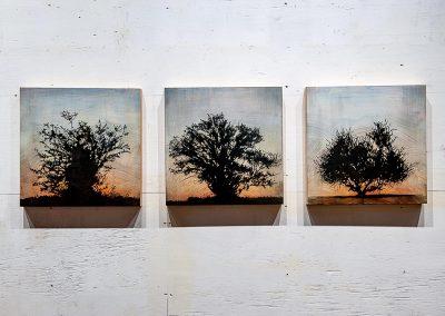 Tree grid, 3 panels (Family series) - Stephen Hutchings