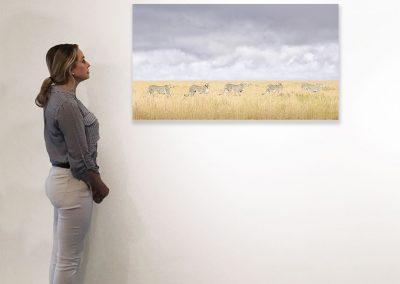 Cheeta Coalition, Maasai Mara, Kenya, 27x48, installation