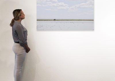 Elephant on the Horizon, Amboseli, Kenya 27 x 48 installation