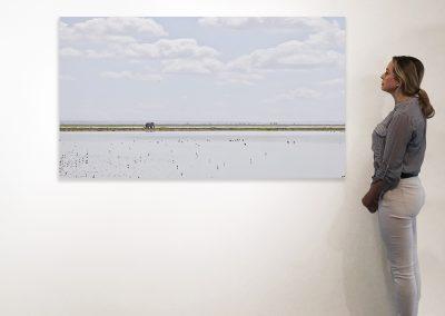 Elephant on the Horizon, Amboseli, Kenya 37 x 66 installation
