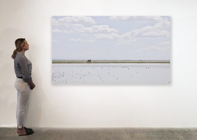 Elephant on the Horizon, Amboseli, Kenya 48 x 85 installation