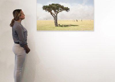 Paradise, Maasai Mara Kenya 27 x 48 installation