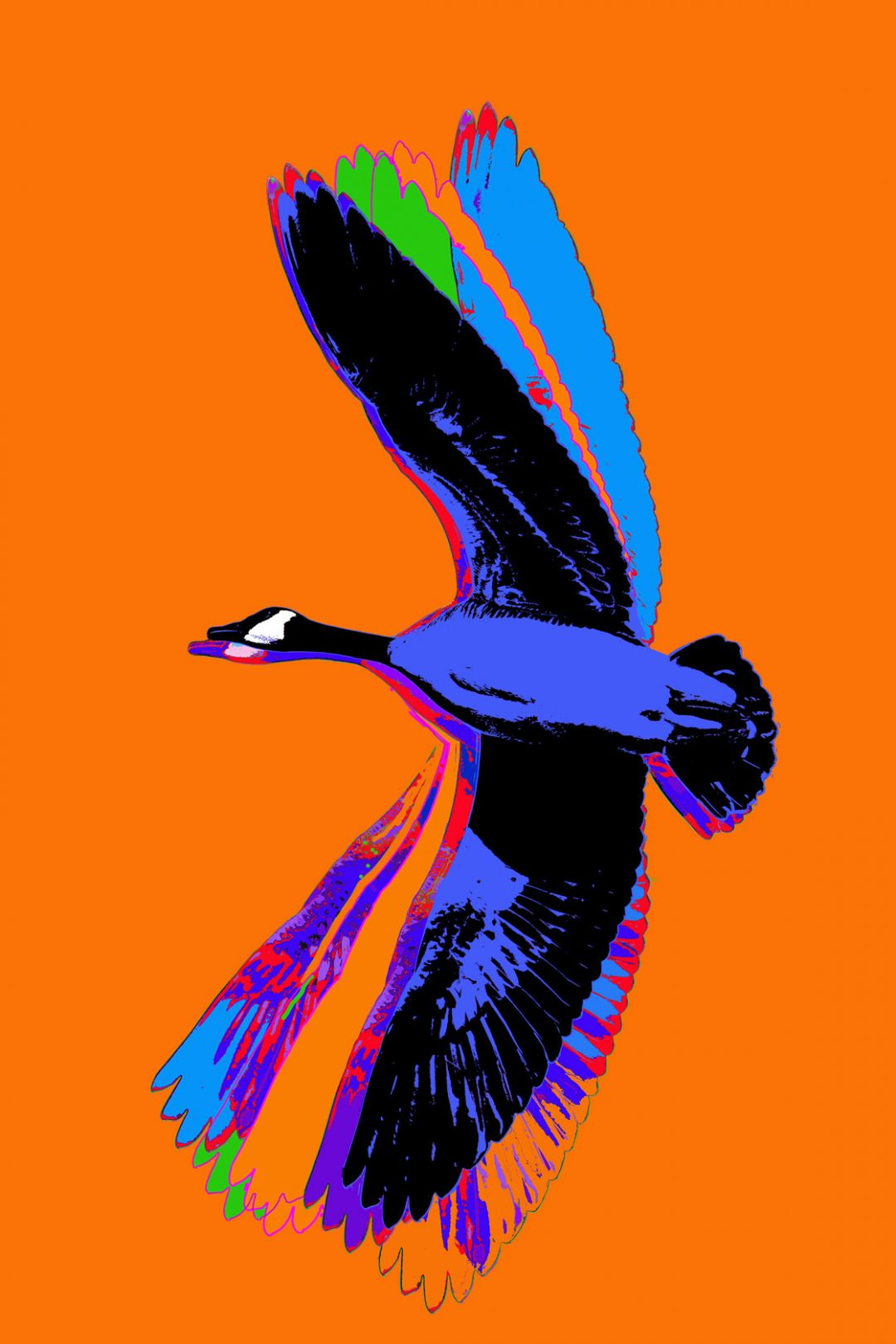 Flight (Canada Goose from Made in Canada part 2) 2019 (Orange)
