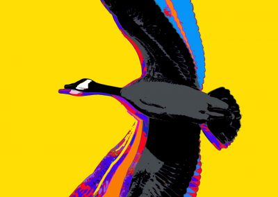 Flight (Canada Goose from Made in Canada part 2) 2019 (Yellow)