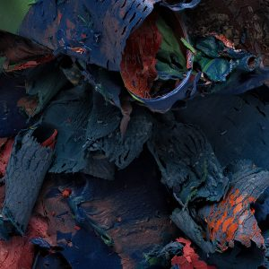 The Painted Photograph: Remnants – #474 v3