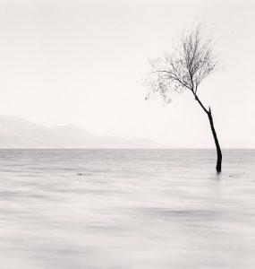 Erhai Lake, Study 5, Yunnan, China